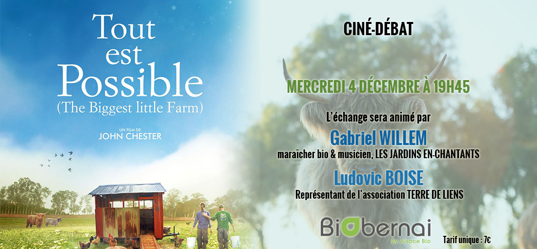 Photo du film Tout est possible (The biggest little farm)